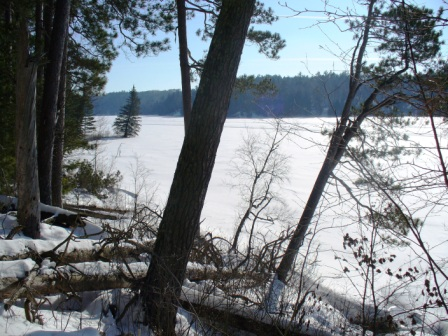Itasca State Park 2.23.08.012 - South View on the East Arm