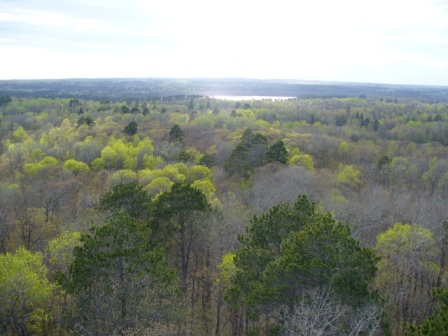 West from Aiton Heights Fire Tower